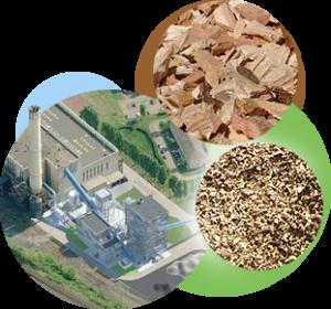 energie biomasse